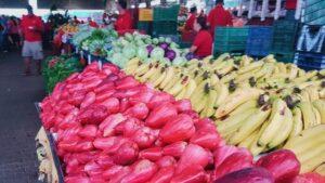 costa rica farmers market