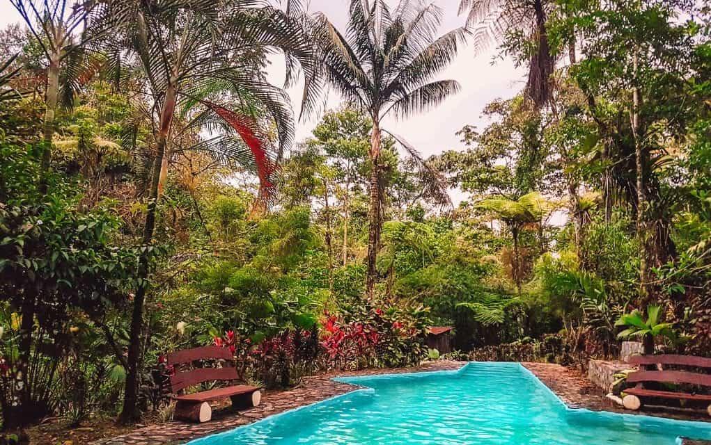 jungle vibes itinerary