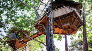 Sacred Geome tree house costa rica