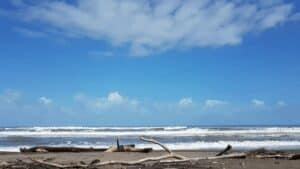 tortuguero national park beach