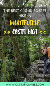 Have you ever been to a cloud forest? The cloud forest in Monteverde Costa Rica is a unique experience. Click here to find out everything you need to know about the Santa Elena Reserve! #CostaRica #Monteverde