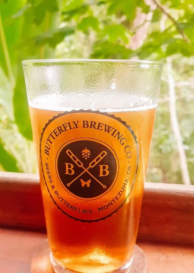 butterfly brewing