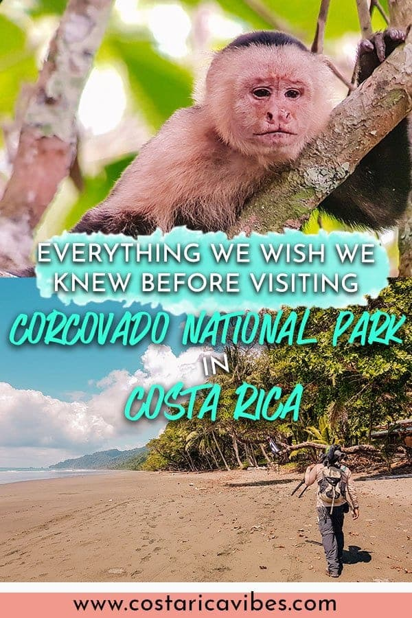 Corcovado National Park in Costa Rica is an amazing place to see tons of animals and take a nice hike. Find out how to plan the perfect Corcovado visit with this guide. #Corcovado #costaRica