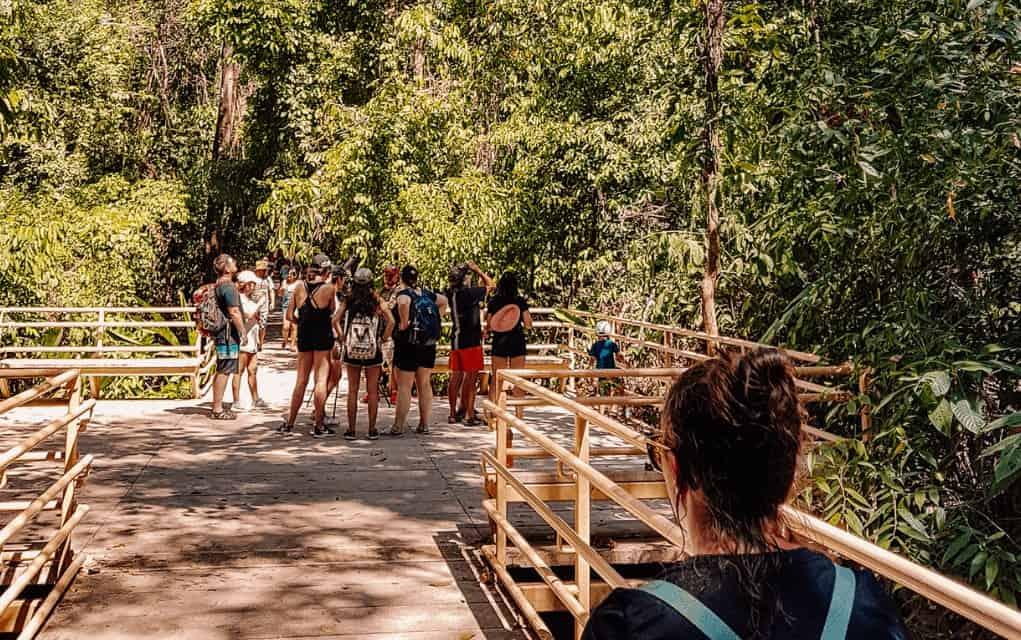 manuel antonio national park guide