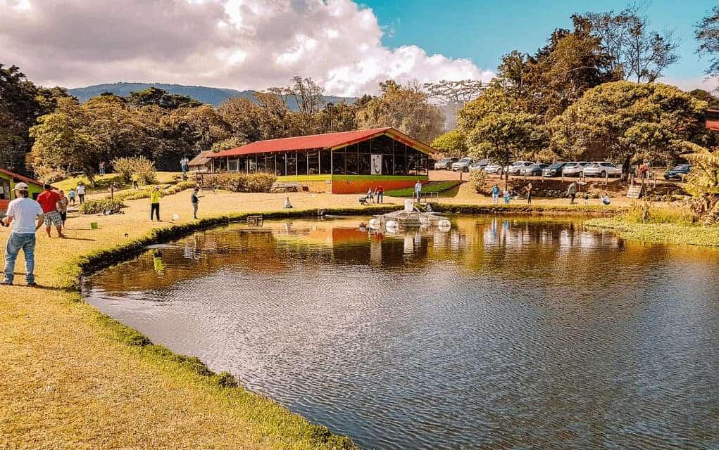 Costa Rica trucha