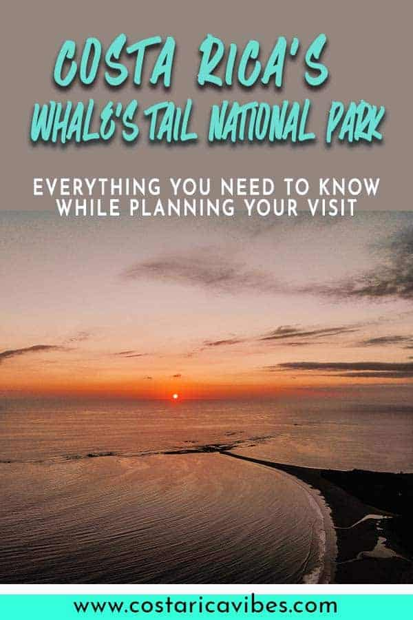 Marino Ballena National Park in Costa Rica is home to the unique whales tail. Find out how you can plan your perfect visit here. #CostaRica #Uvita #whalestail
