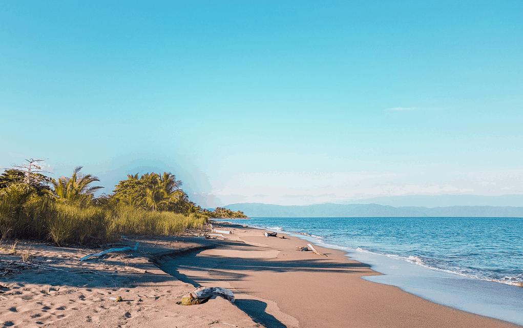 puerto jiminez - pacific coast