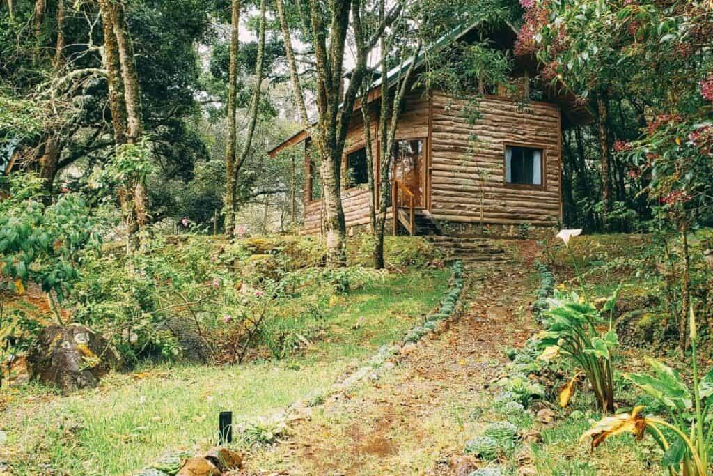 san gerardo de dota airbnb