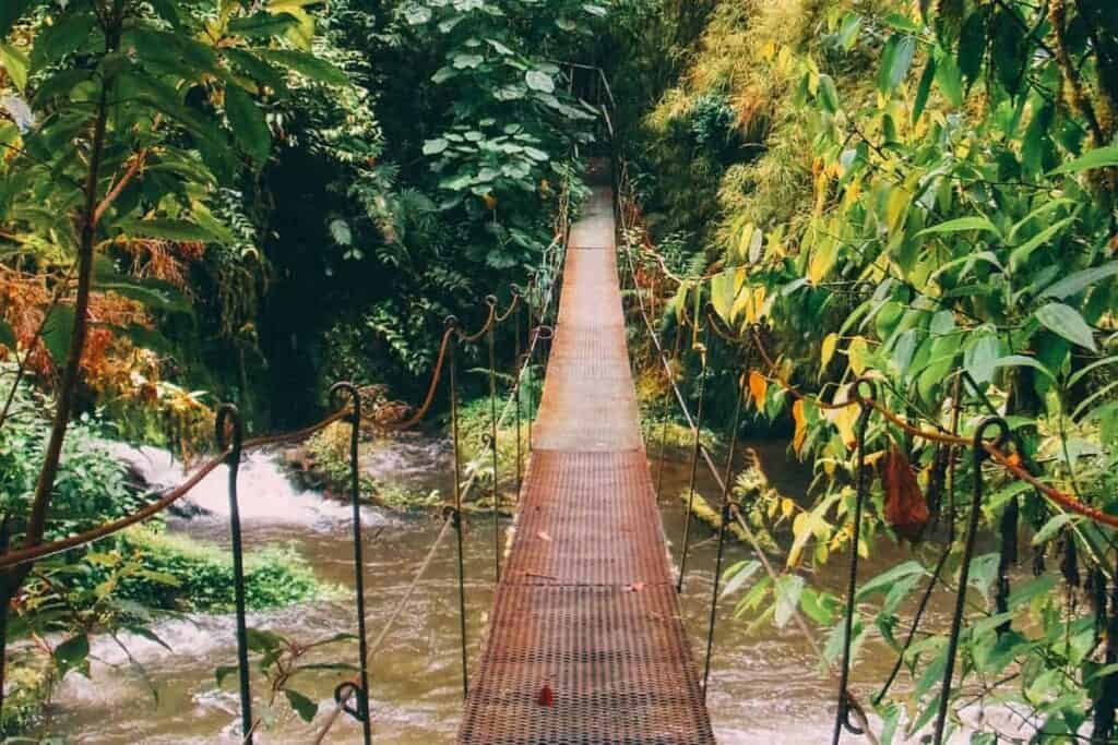 hanging bridge costa rica