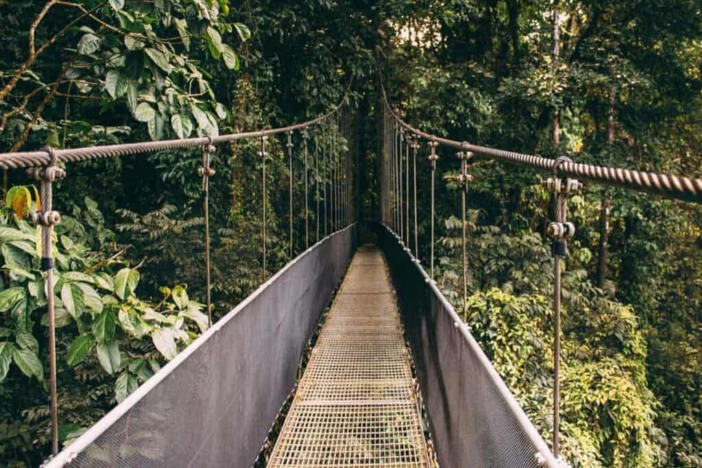 hanging bridge la fortuna