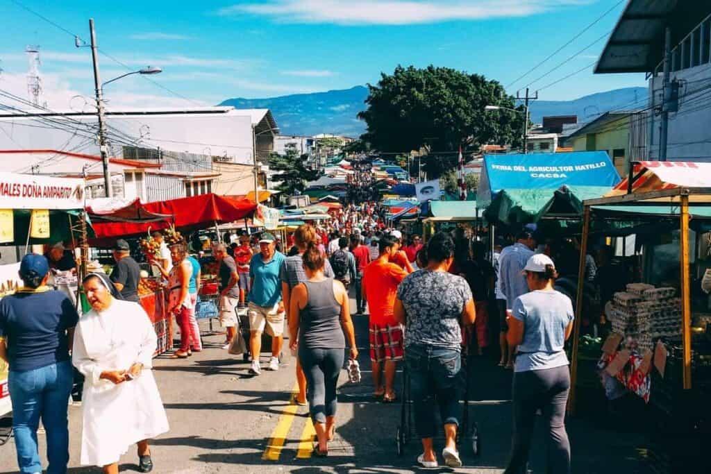 ticos farmers market