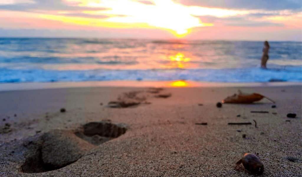costa rica sunset view nosara