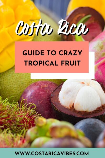costa rica fruit