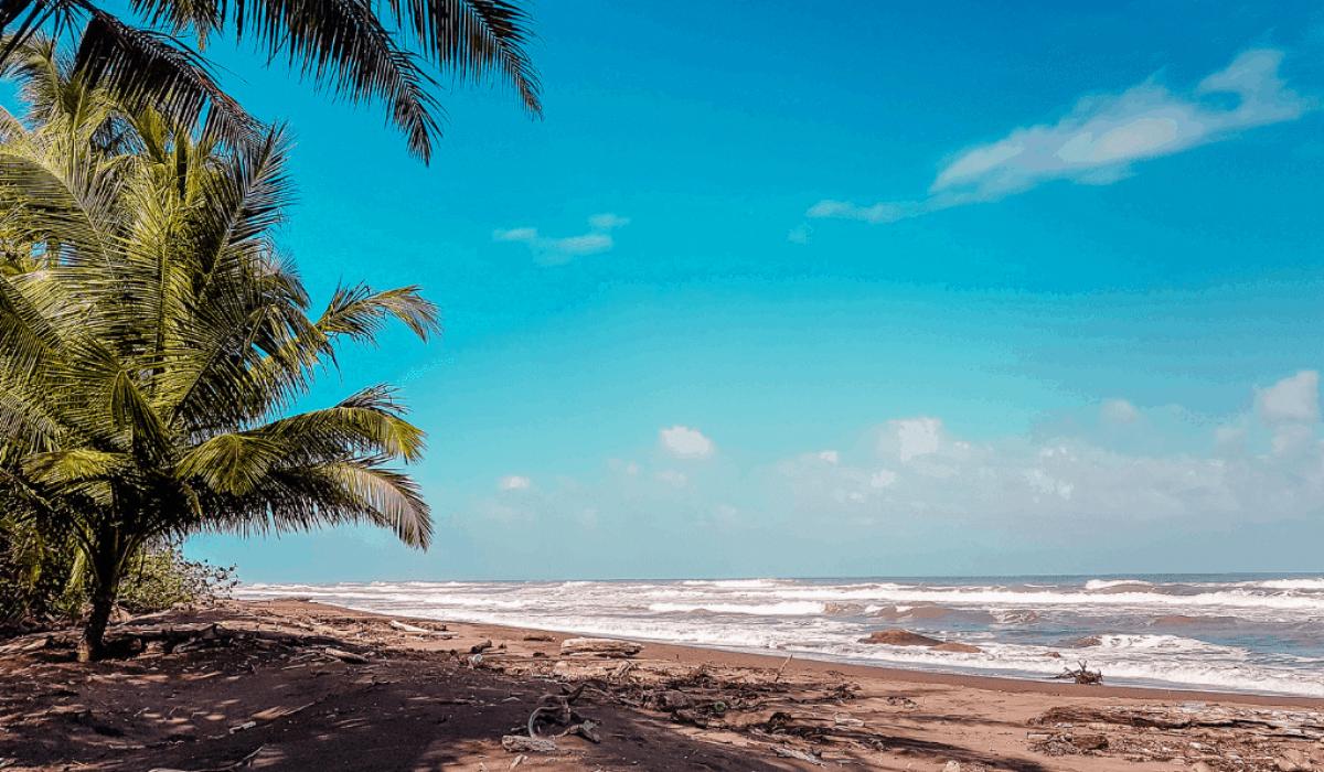 tortuguero - caribbean coast