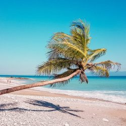 puerto jiminez beach